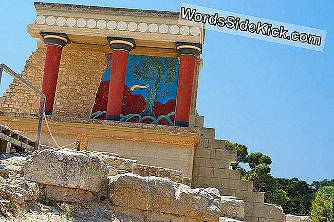 Mysterious Minoans Were European, Dna Finds