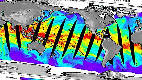 The Cassava Express: 1St Antarctica Atmospheric River Found