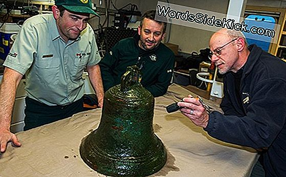 Foto'S: Bronze Bell Recovered From Arctic Shipwreck