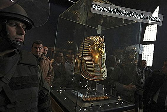 Weird Accident Damaged King Tut'S Beard