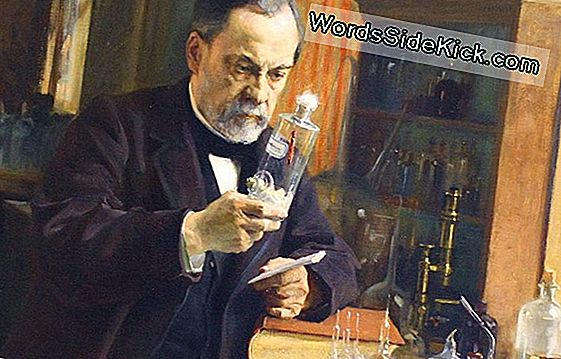 Louis Pasteur: Biografie & Quotes