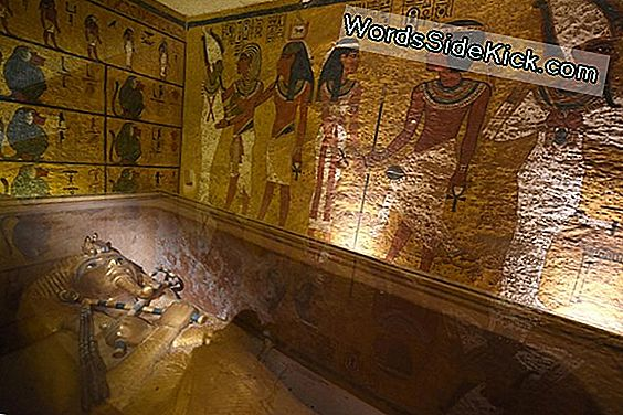 Nieuwe Scans Van King Tut'S Tomb May Reveal Hidden Burial Chamber
