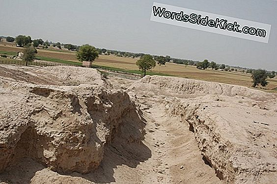 Mystery Solved: How The Ancient Indus Civilization Overleefd Without Rivers