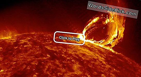 Giant Sun Eruption Vastgelegd In Nasa Video