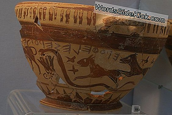 Astronomical Find: Ancient Greek Wine Cup May Constellations Laten Zien