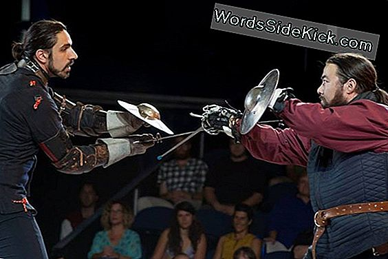Storytellers Of The Blade: Accuracy In Swordplay
