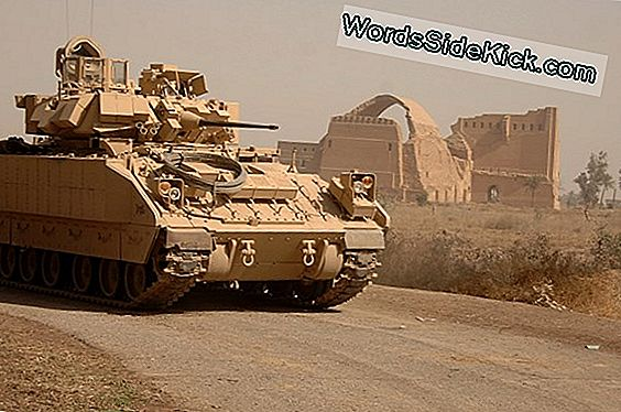 Come Funziona Bradley Fighting Vehicles