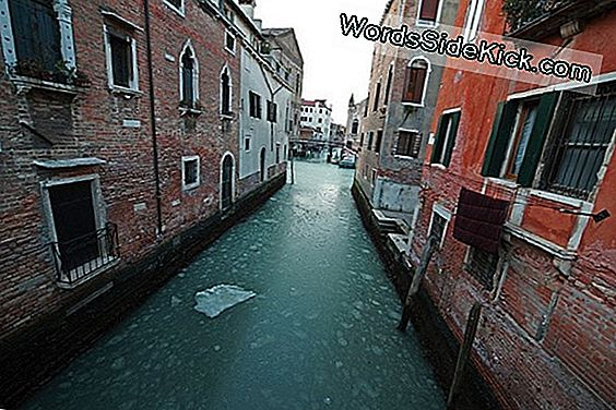 Take A Look: A Venice Canal... Bevroren