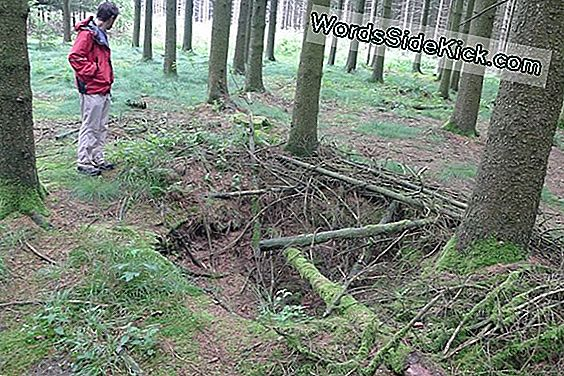 Hidden World War Ii Battlefields Reveal Germans 'Secret Tactics