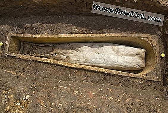 Mystery Woman Buried Near Richard Iii