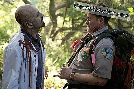 Always 'Z' Prepared: When Zombies Attack, Look For A Scout