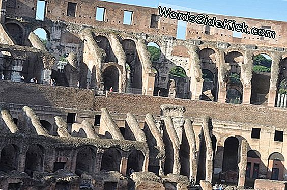 'Lost' Roads Of Ancient Rome Ontdekt Met 3D-Laserscanners
