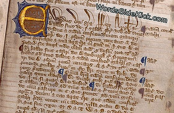 Wat Is De Magna Carta?