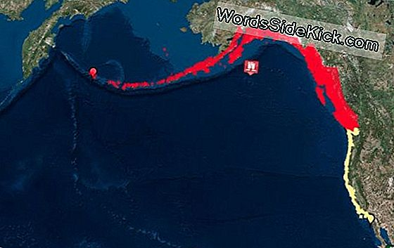 Earthquakes Off Alaska Pose Us Tsunami Risk