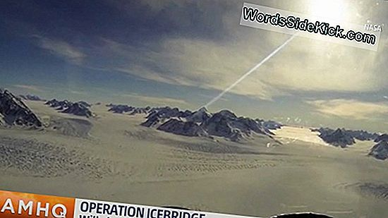 Nasa'S Icebridge Gaat Van Start In De Arctic Mission