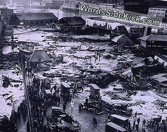 Great Molasses Flood Of 1919: Why This Deluge Of Goo Was So Deadly