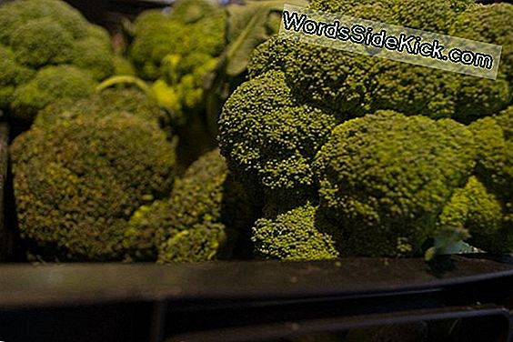 Broccoli-Samenstelling Kan Diabetes Type 2 Helpen Behandelen