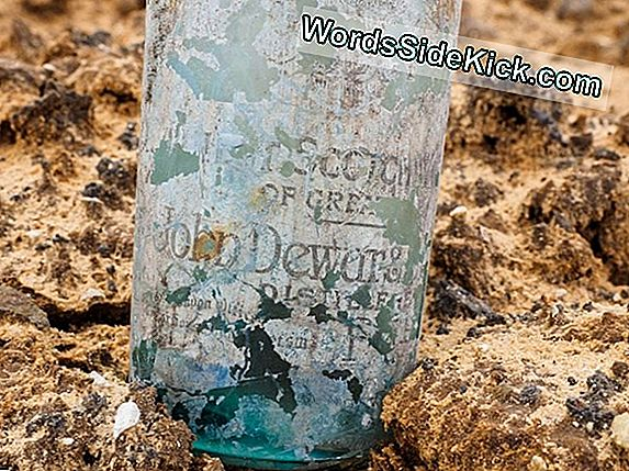 British Wwi Stash Uncovered: Honderden Sterke Drankflessen