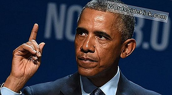 Obama Noemt Clean Energy Progress 'Irreversible'