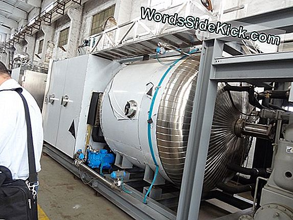 Hoe Freeze-Drying Werkt