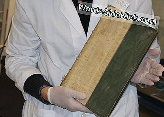 Books That Kill: 3 Poisonous Renaissance Manuscripts Discovered In School Library