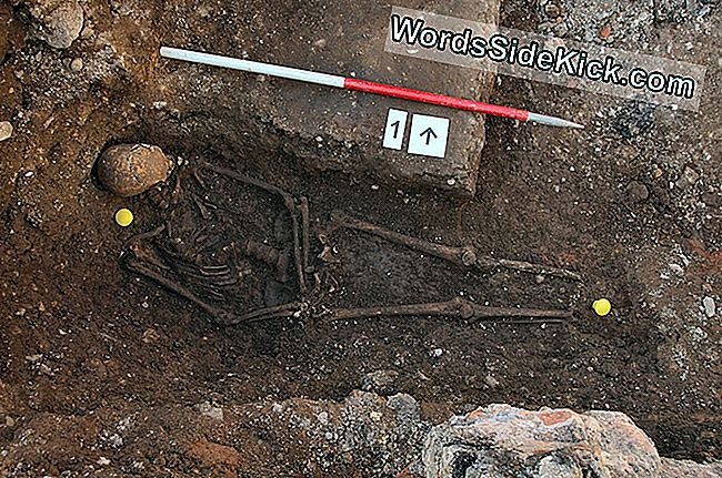 Bones Met Namen: Long-Dead Bodies Archaeologists Have Identified