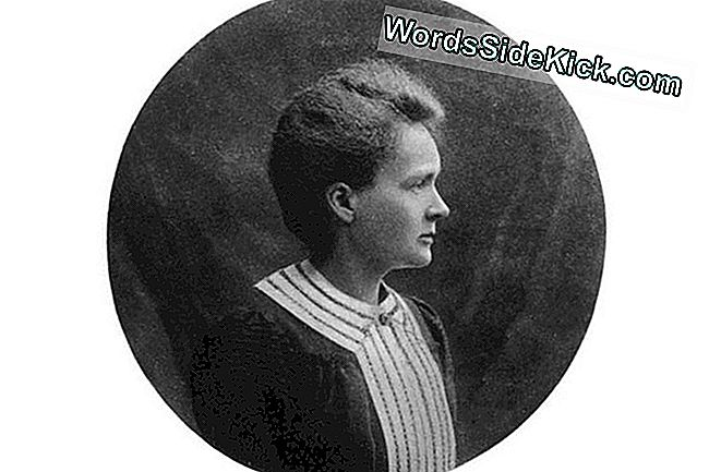 Marie Curie: Facts & Biography