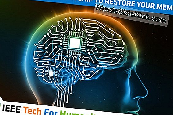 Brain Chip For At Stimulere Orgasmer