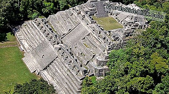 Ancient Mayan Marketplace Discovered