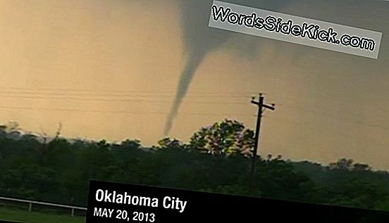 12 Twisted Tornado Faktid