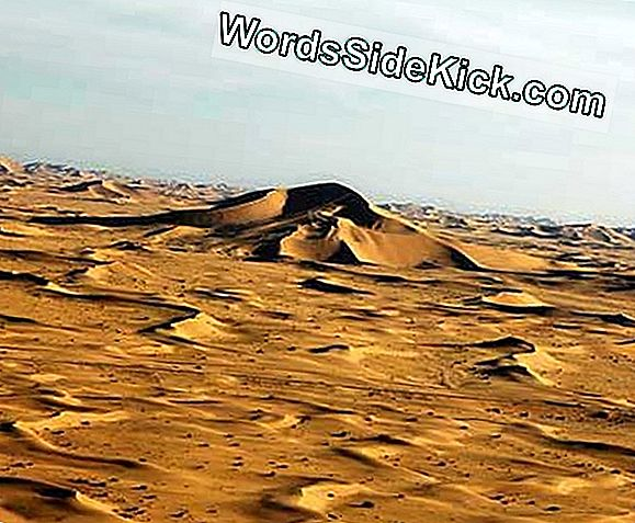 Hvordan Sand Dunes Grow Huge
