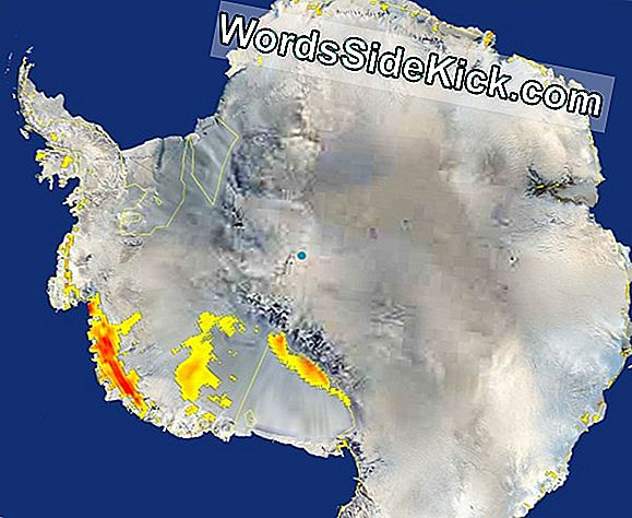Nasa: Antarctic Snowmelt Stigende