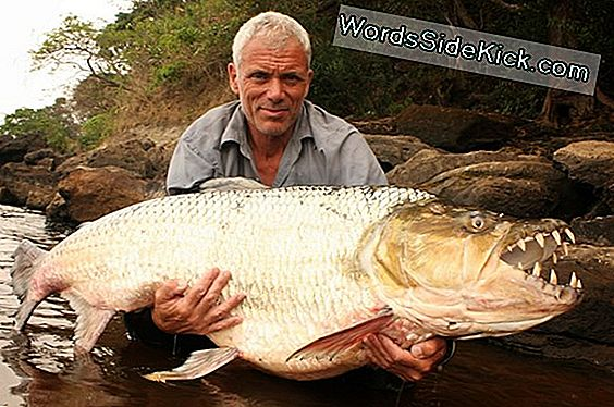 River Monsters Virkelighed