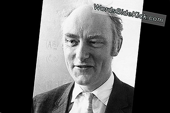 Francis Crick: Co-Discoverer Af Dna'S Double Helix