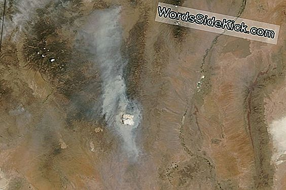 Pyrocumulus Cloud Spotted From Space