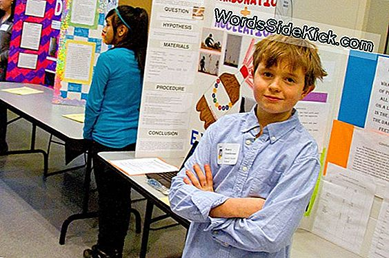 Middle School Science Fair -Hankkeet