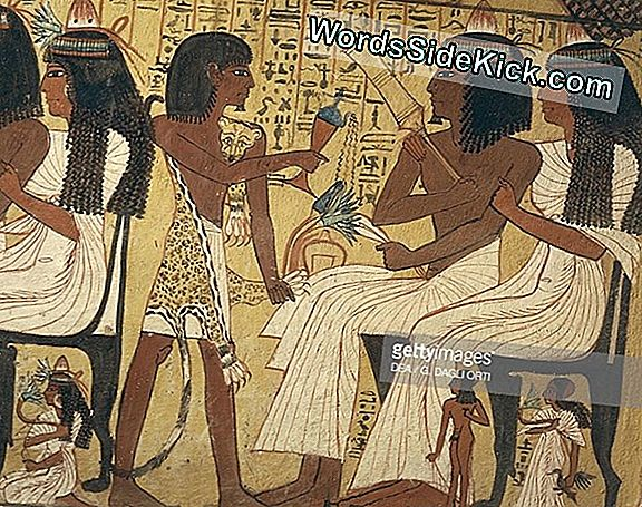 Ancient Priest'S Tomb Painting Opdaget I Nærheden Af ​​Great Pyramid På Giza