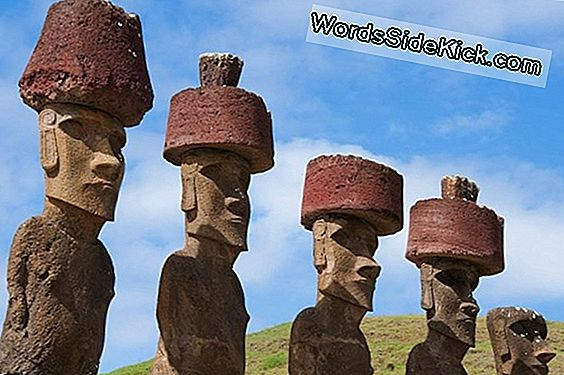 Giant Easter Island 'Hats' Rolde In De Plaats, Studie Zegt
