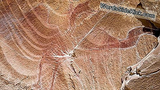 Kuvat: 'Winged Monster' Rock Art On Black Dragon Canyon