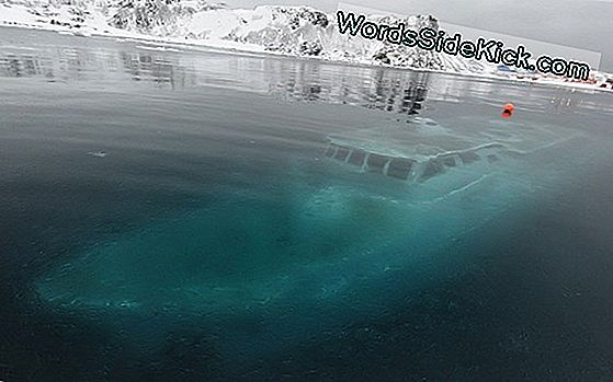 Sunken Ships Revealed Efter Ice Smelter I Lake Michigan (Billeder)