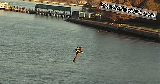 Jetpack Pilot Soars Over Nyc Hudson River, Salutes Lady Liberty