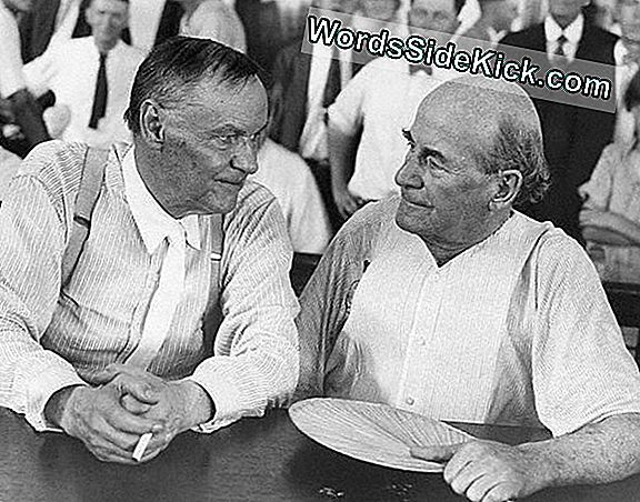 Scopes Monkey Trial: Science On The Stand