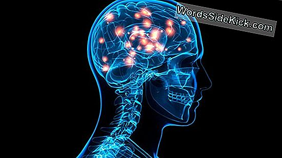 Brain Stimulation Kunne Hastighed Stroke Recovery