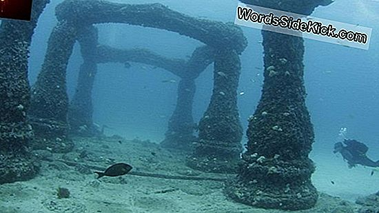Amazing Lost 'Atlantis' Overlever Under Det Engelske Hav