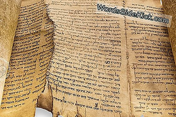 Mystery Of Dead Sea Scroll Forfattere Eventuelt Løst