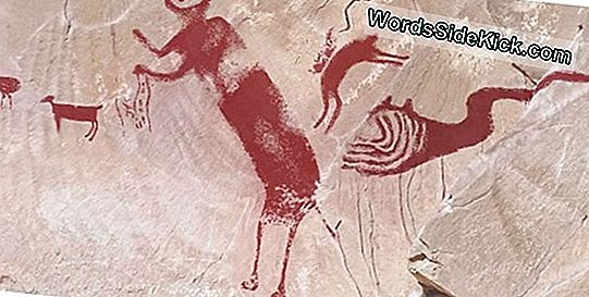 'Winged Monster' Rock Art Endelig Deciphered