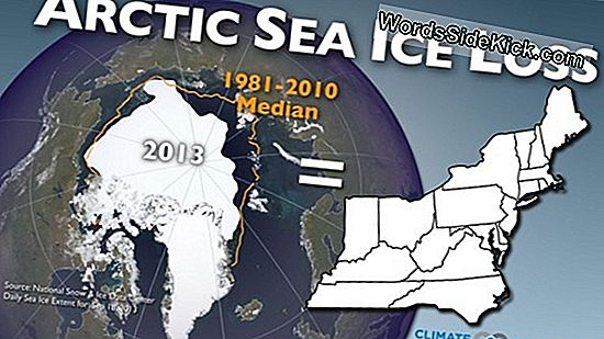 Arctic Sea Ice Extent Hits 2. Laveste På Optag
