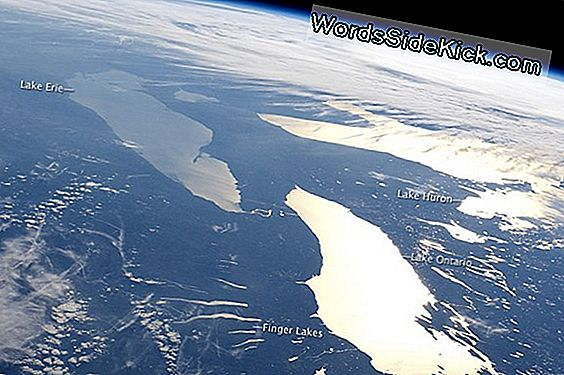 Astronaut Photo Shows Sun Glint Off Great Lakes
