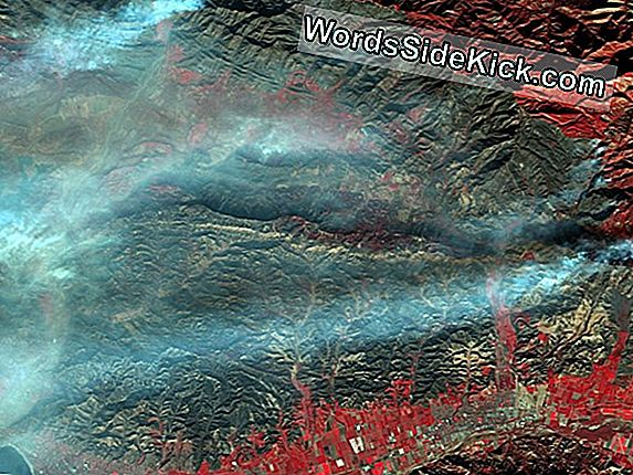 California Wildfire Burn Scar Spotted From Space