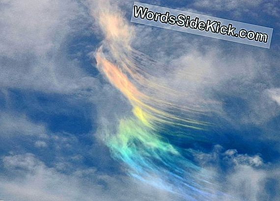 Ghostly Rainbow Floats Over Washington